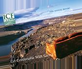 Annual Report - 2006