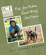 Annual Report - 2013