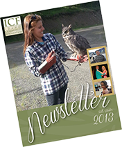 Newsletter - 2013